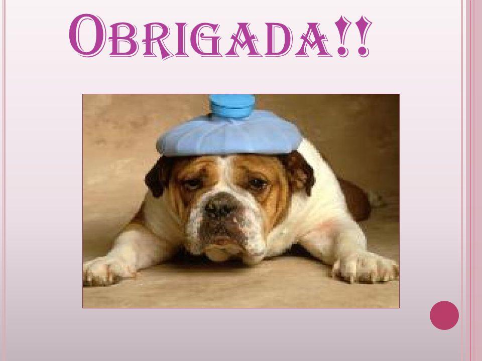 O BRIGADA !!