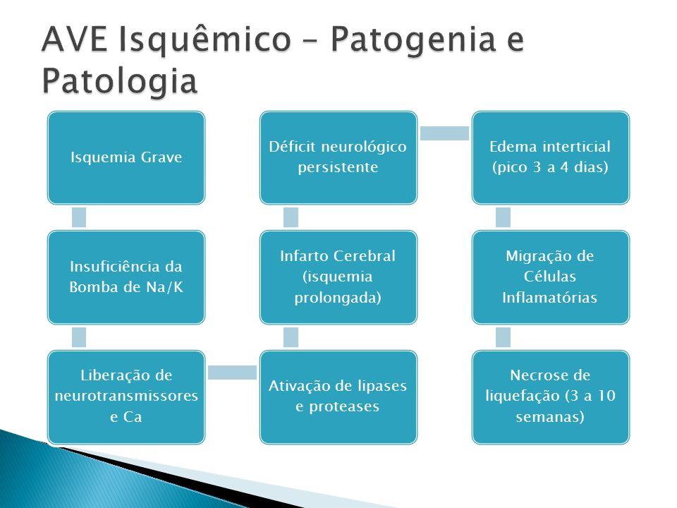 Isquemia Grave Insuficiência da Bomba de Na/K Liberação de neurotransmissores e Ca Ativação de lipases e proteases Infarto Cerebral (isquemia prolonga