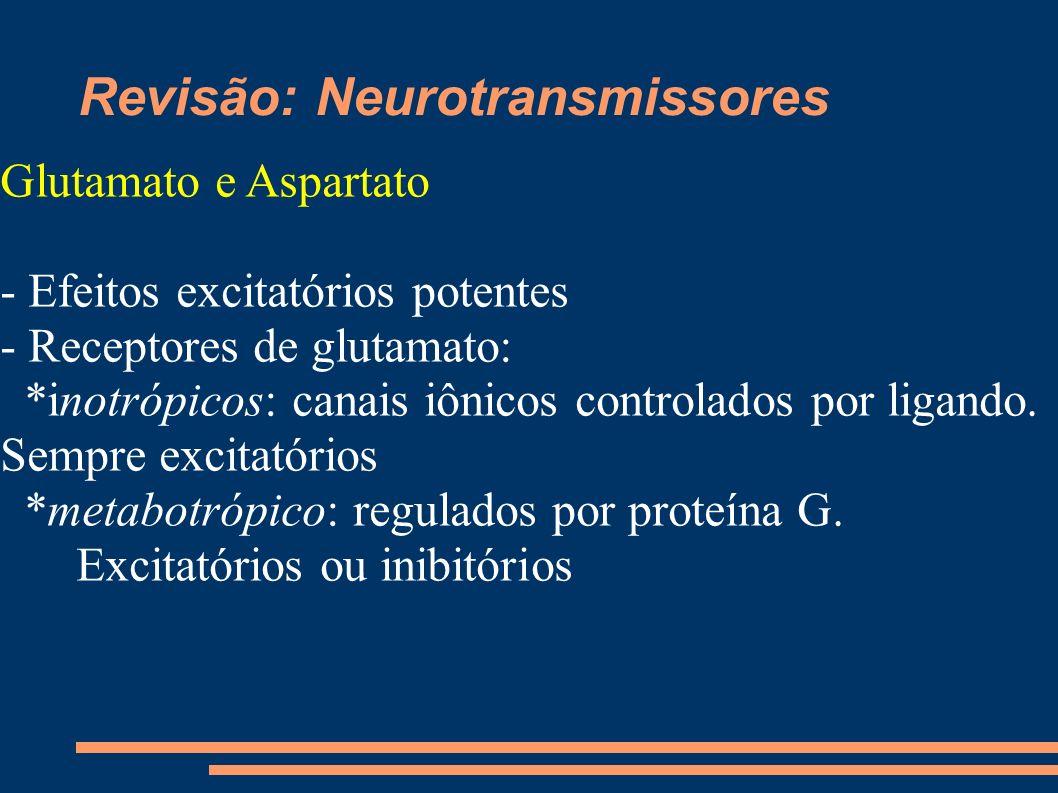 Revisão: Neurotransmissores Glutamato e Aspartato - Efeitos excitatórios potentes - Receptores de glutamato: *inotrópicos: canais iônicos controlados