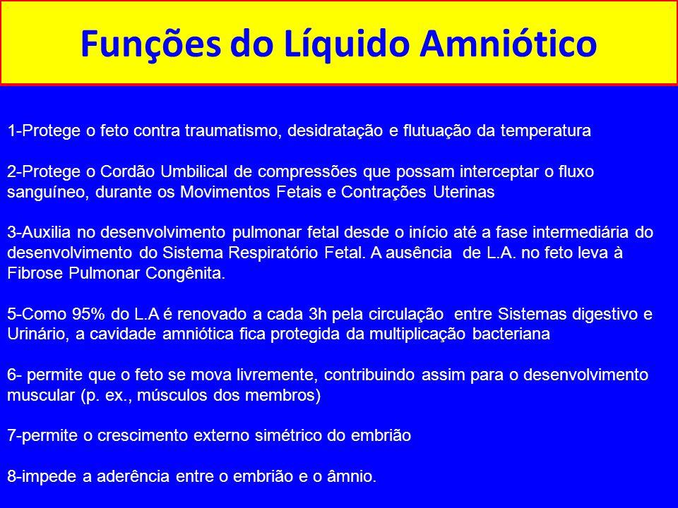 Funções do Líquido Amniótico 1-Protege o feto contra traumatismo, desidratação e flutuação da temperatura 2-Protege o Cordão Umbilical de compressões