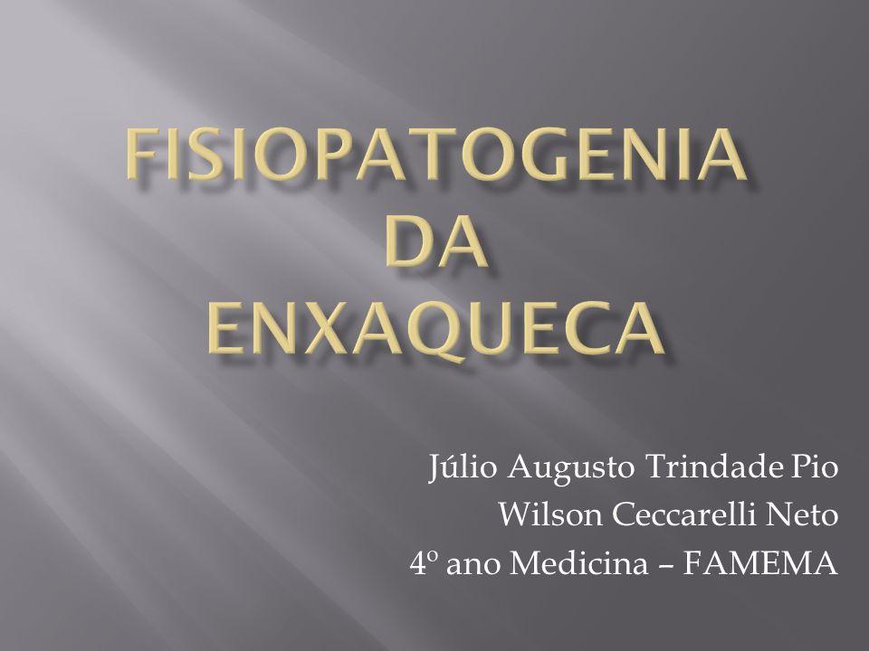 Isabel Pavão MARTINS, Enxaqueca – da clínica para a etiopatogenia, Acta Med Port.
