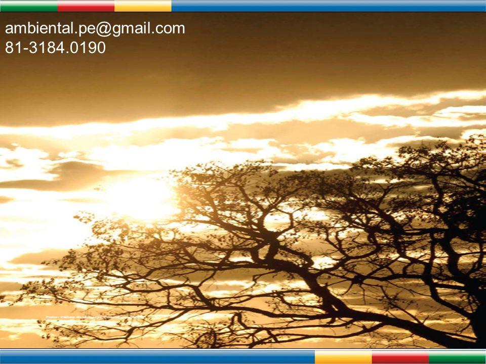 ambiental.pe@gmail.com 81-3184.0190