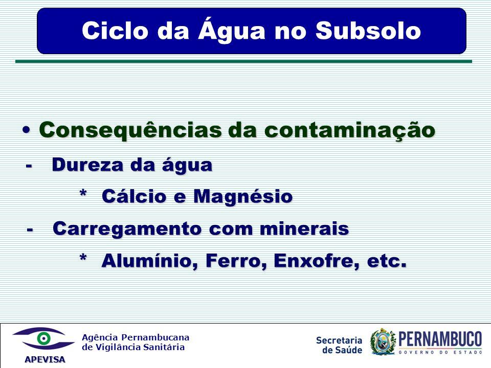 Agência Pernambucana de Vigilância Sanitária APEVISA Consequências da contaminação Consequências da contaminação - Dureza da água - Dureza da água * C