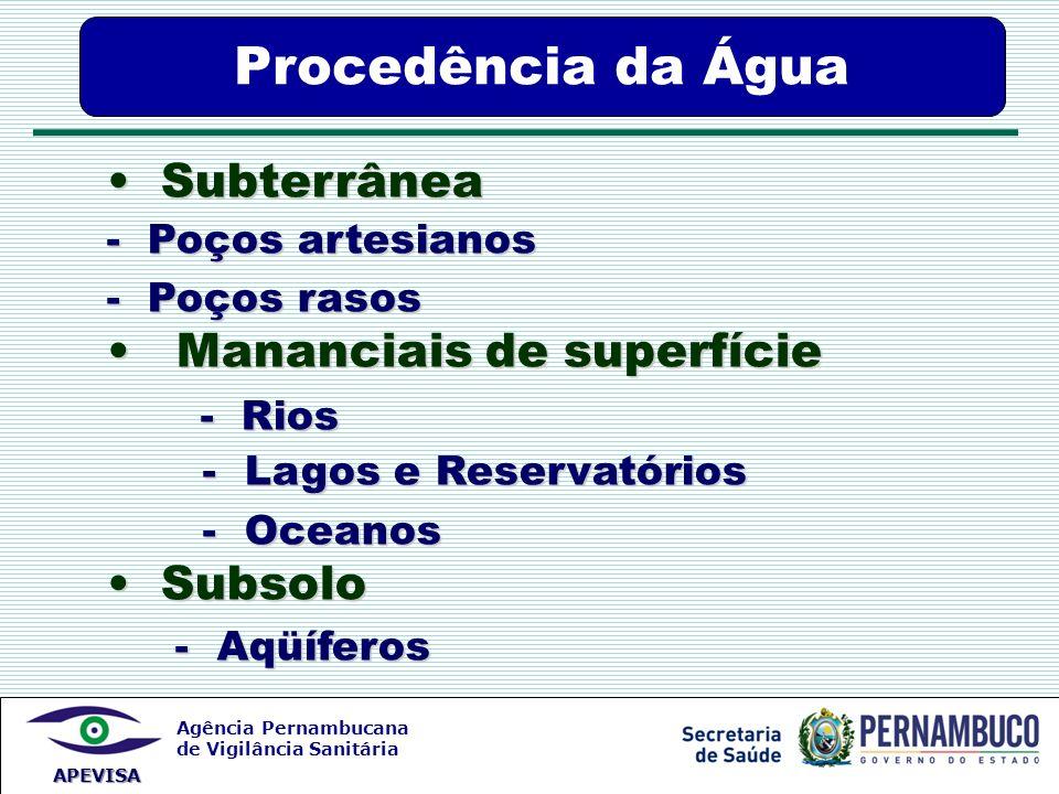 Agência Pernambucana de Vigilância Sanitária APEVISA Procedência da Água Subterrânea Subterrânea - Poços artesianos - Poços rasos Mananciais de superf