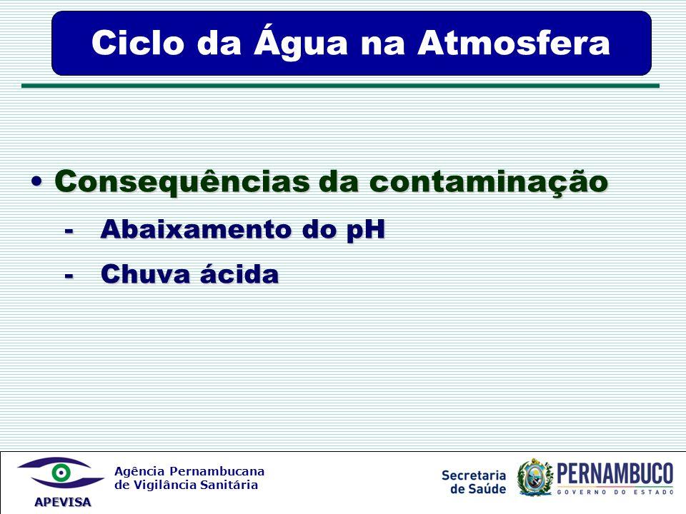 Agência Pernambucana de Vigilância Sanitária APEVISA Ciclo da Água na Atmosfera Consequências da contaminação Consequências da contaminação - Abaixame