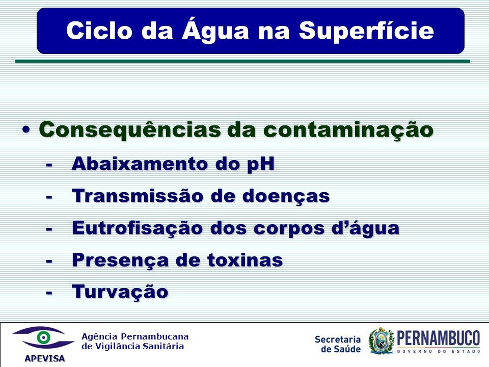Agência Pernambucana de Vigilância Sanitária APEVISA Consequências da contaminação Consequências da contaminação - Abaixamento do pH - Abaixamento do