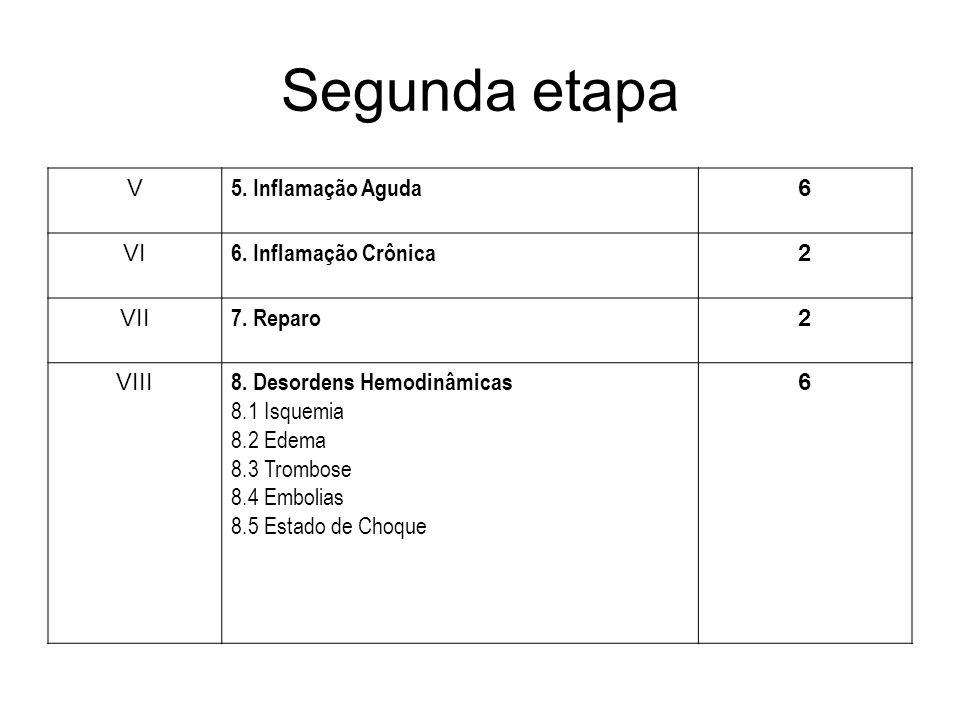 Segunda etapa V 5.Inflamação Aguda 6 VI 6. Inflamação Crônica 2 VII 7.