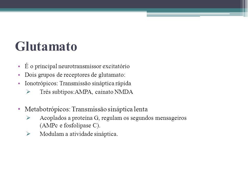 Glutamato É o principal neurotransmissor excitatório Dois grupos de receptores de glutamato: Ionotrópicos: Transmissão sináptica rápida Três subtipos: