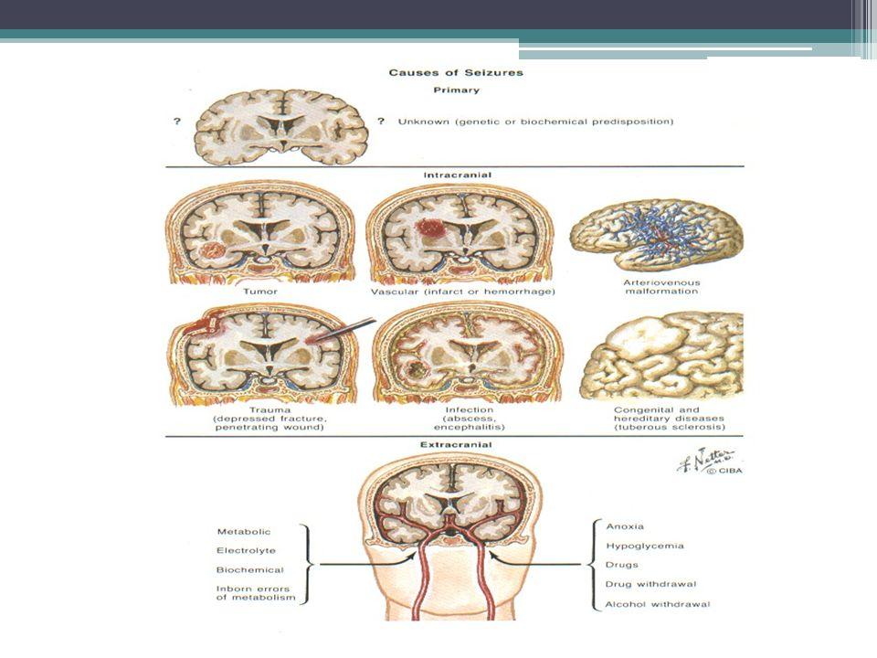 Fisiopatologia As convulsões resultam das interações sincrônicas de grandes populações de neurônios que descarregam intermitentemente em padrões anormais.