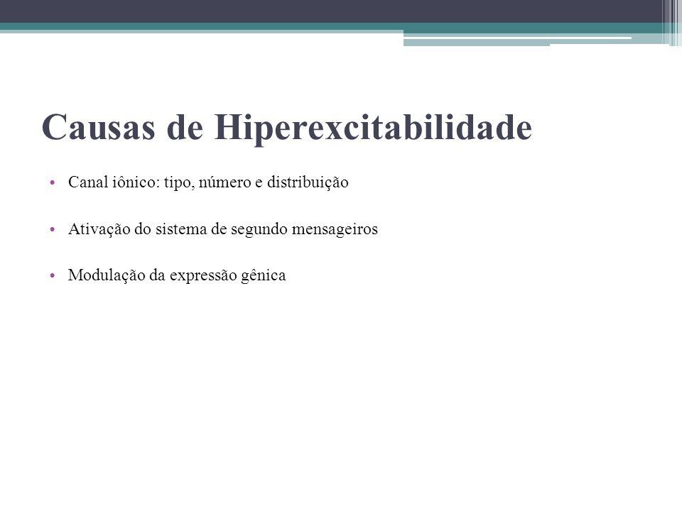 Causas de Hiperexcitabilidade Canal iônico: tipo, número e distribuição Ativação do sistema de segundo mensageiros Modulação da expressão gênica