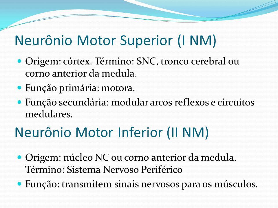 Neurônio Motor Superior (I NM) Origem: córtex. Término: SNC, tronco cerebral ou corno anterior da medula. Função primária: motora. Função secundária: