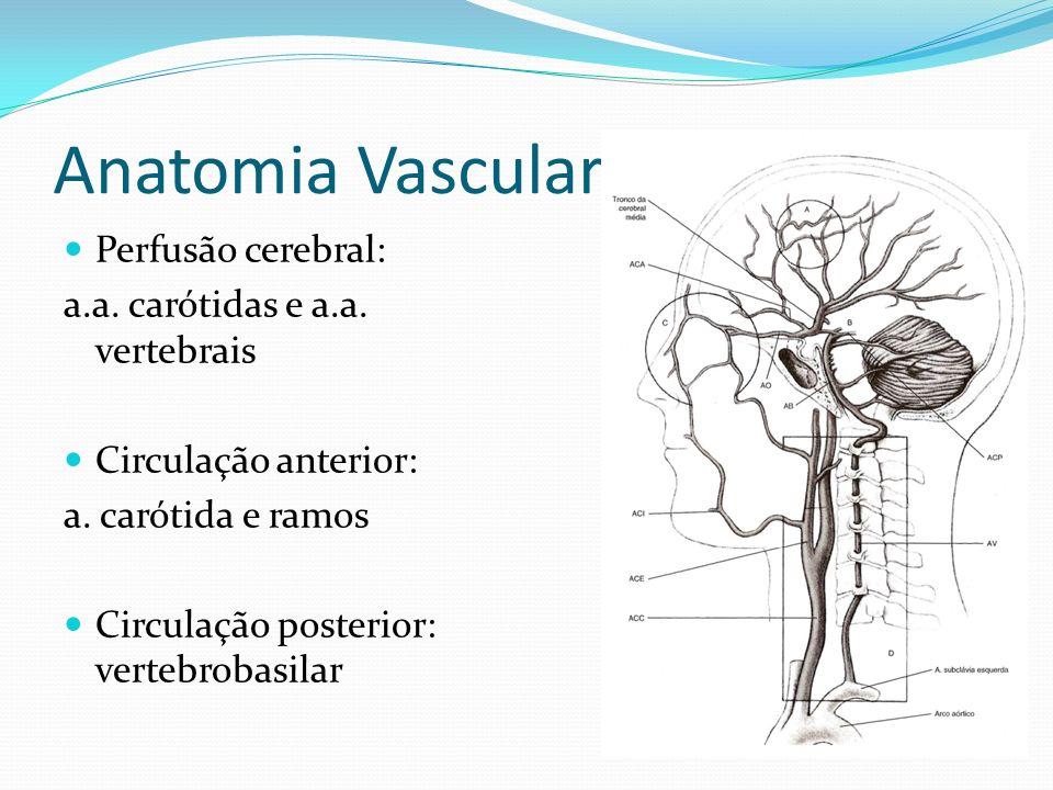 Anatomia Vascular Perfusão cerebral: a.a. carótidas e a.a. vertebrais Circulação anterior: a. carótida e ramos Circulação posterior: vertebrobasilar