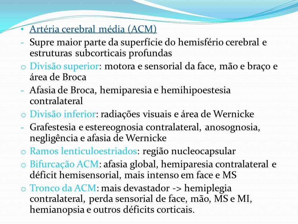 Artéria cerebral média (ACM) - Supre maior parte da superfície do hemisfério cerebral e estruturas subcorticais profundas o Divisão superior: motora e