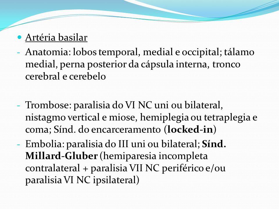 Artéria basilar - Anatomia: lobos temporal, medial e occipital; tálamo medial, perna posterior da cápsula interna, tronco cerebral e cerebelo - Trombo