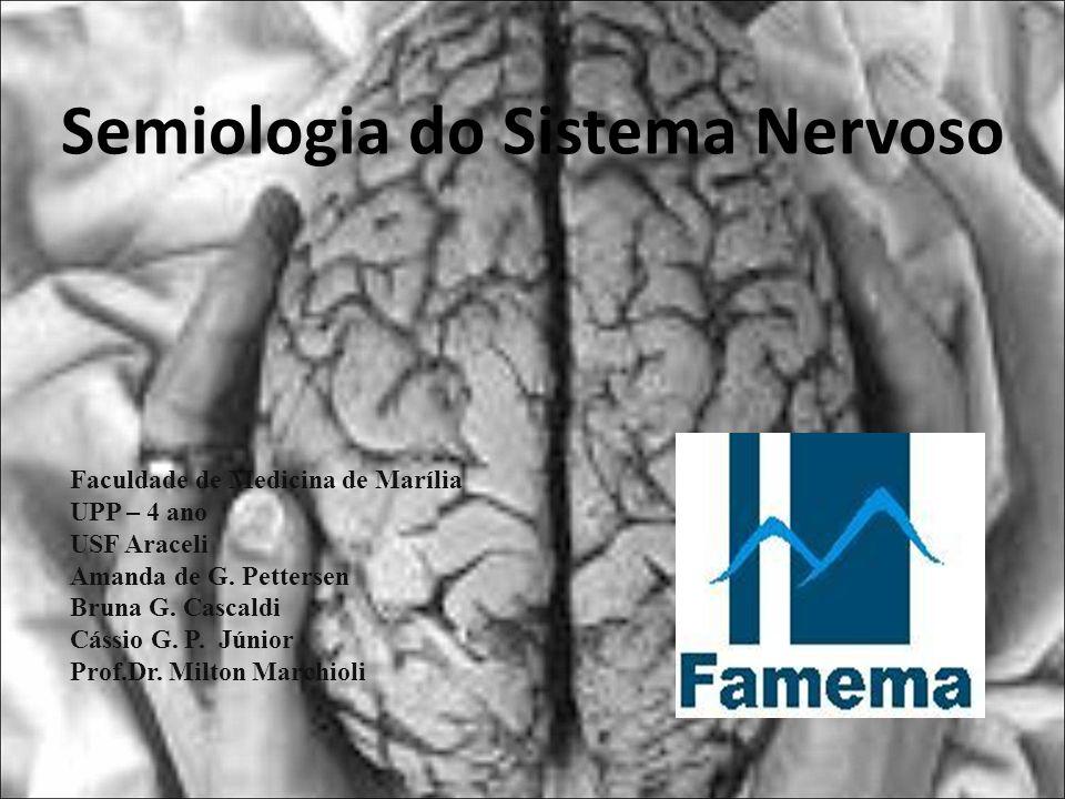 Semiologia do Sistema Nervoso Faculdade de Medicina de Marília UPP – 4 ano USF Araceli Amanda de G. Pettersen Bruna G. Cascaldi Cássio G. P. Júnior Pr