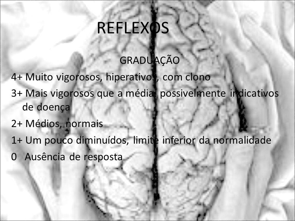 REFLEXOS GRADUAÇÃO 4+ Muito vigorosos, hiperativos, com clono 3+ Mais vigorosos que a média, possivelmente indicativos de doença 2+ Médios, normais 1+