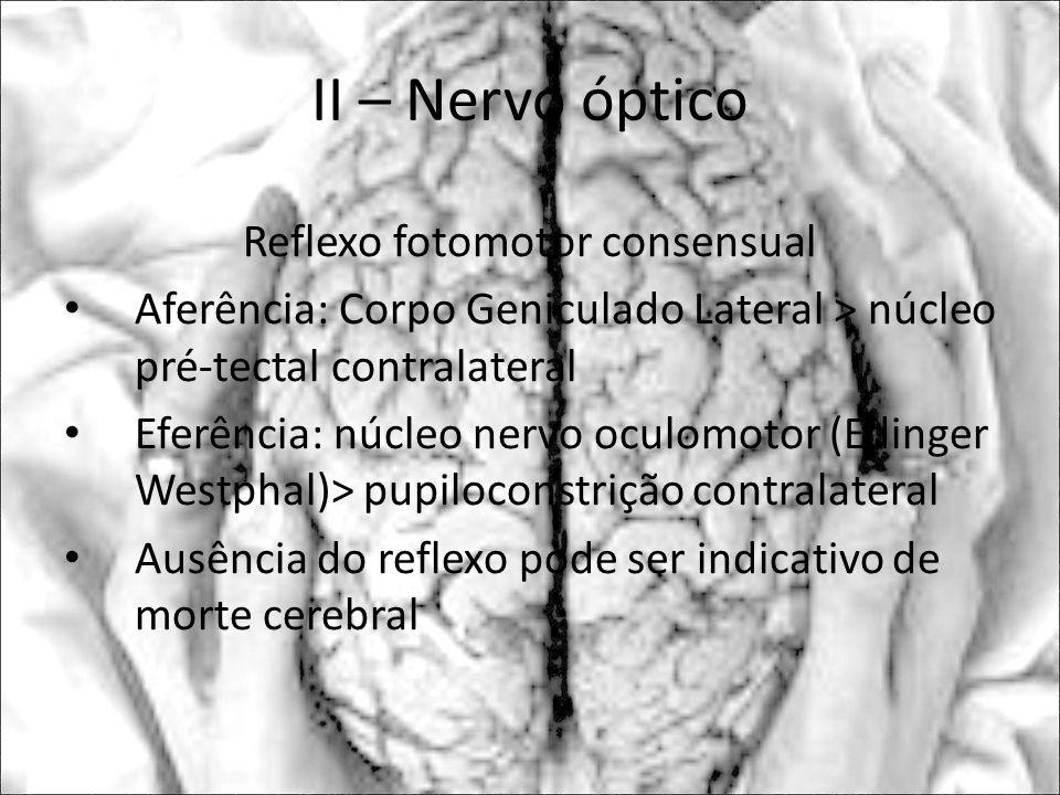 Reflexo fotomotor consensual Aferência: Corpo Geniculado Lateral > núcleo pré-tectal contralateral Eferência: núcleo nervo oculomotor (Edinger Westpha