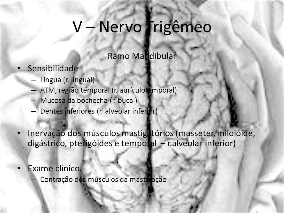 V – Nervo Trigêmeo Ramo Mandibular Sensibilidade – Língua (r. lingual) – ATM, região temporal (r. aurículotemporal) – Mucosa da bochecha (r. bucal) –