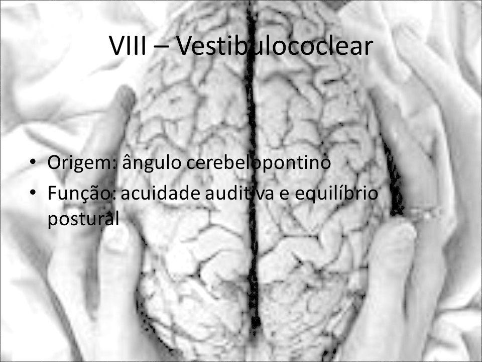 VIII – Vestibulococlear Origem: ângulo cerebelopontino Função: acuidade auditiva e equilíbrio postural