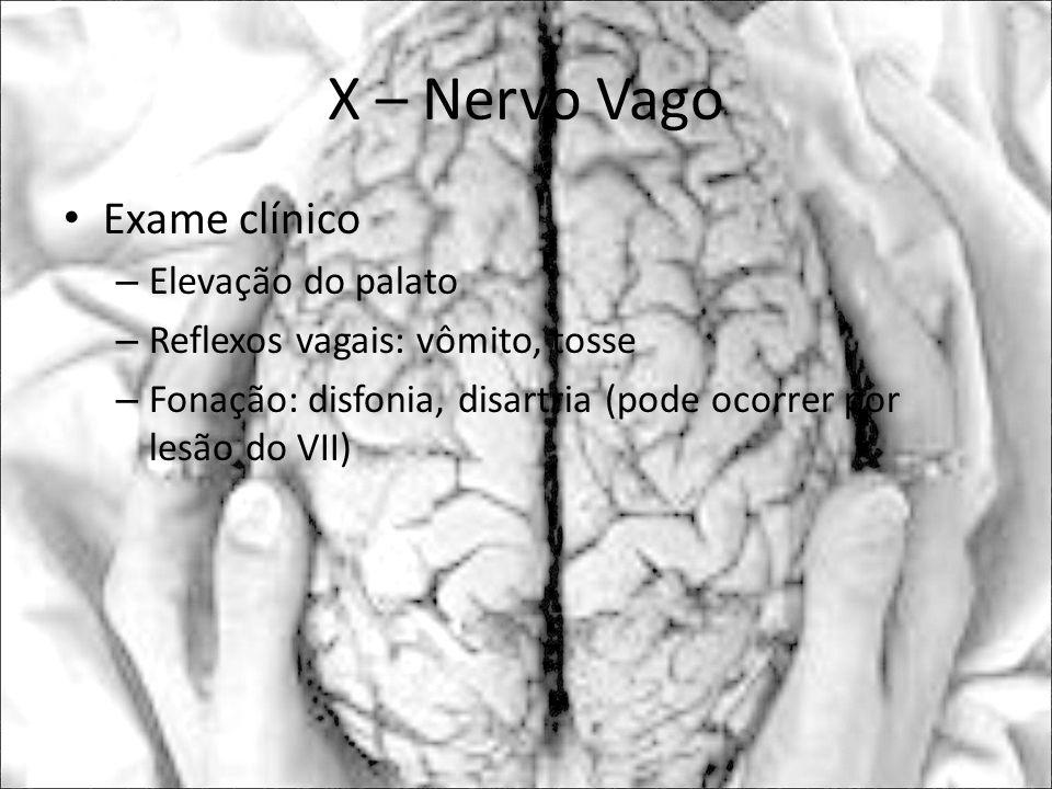 X – Nervo Vago Exame clínico – Elevação do palato – Reflexos vagais: vômito, tosse – Fonação: disfonia, disartria (pode ocorrer por lesão do VII)