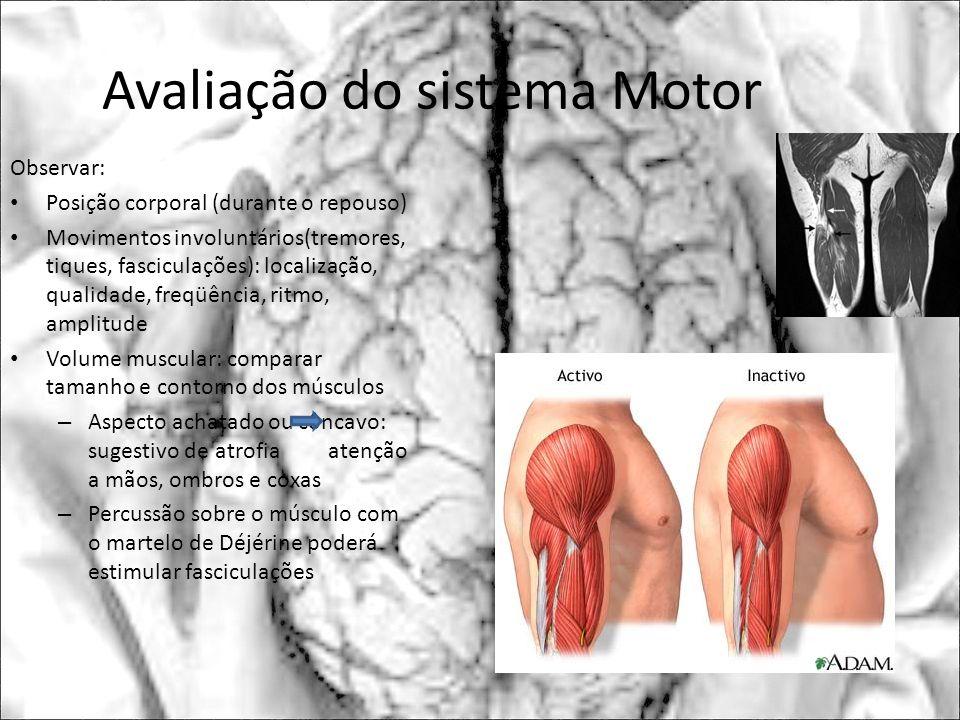 Avaliação do sistema Motor Observar: Posição corporal (durante o repouso) Movimentos involuntários(tremores, tiques, fasciculações): localização, qual