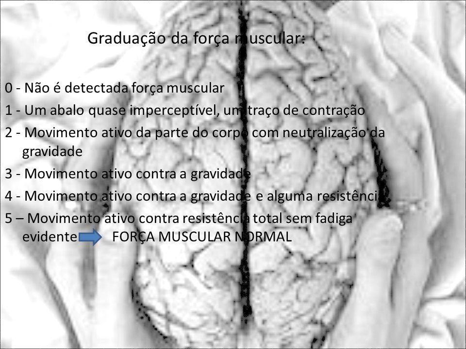 Graduação da força muscular: 0 - Não é detectada força muscular 1 - Um abalo quase imperceptível, um traço de contração 2 - Movimento ativo da parte d