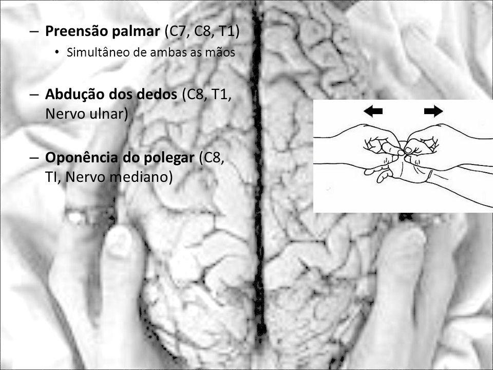 – Preensão palmar (C7, C8, T1) Simultâneo de ambas as mãos – Abdução dos dedos (C8, T1, Nervo ulnar) – Oponência do polegar (C8, TI, Nervo mediano)