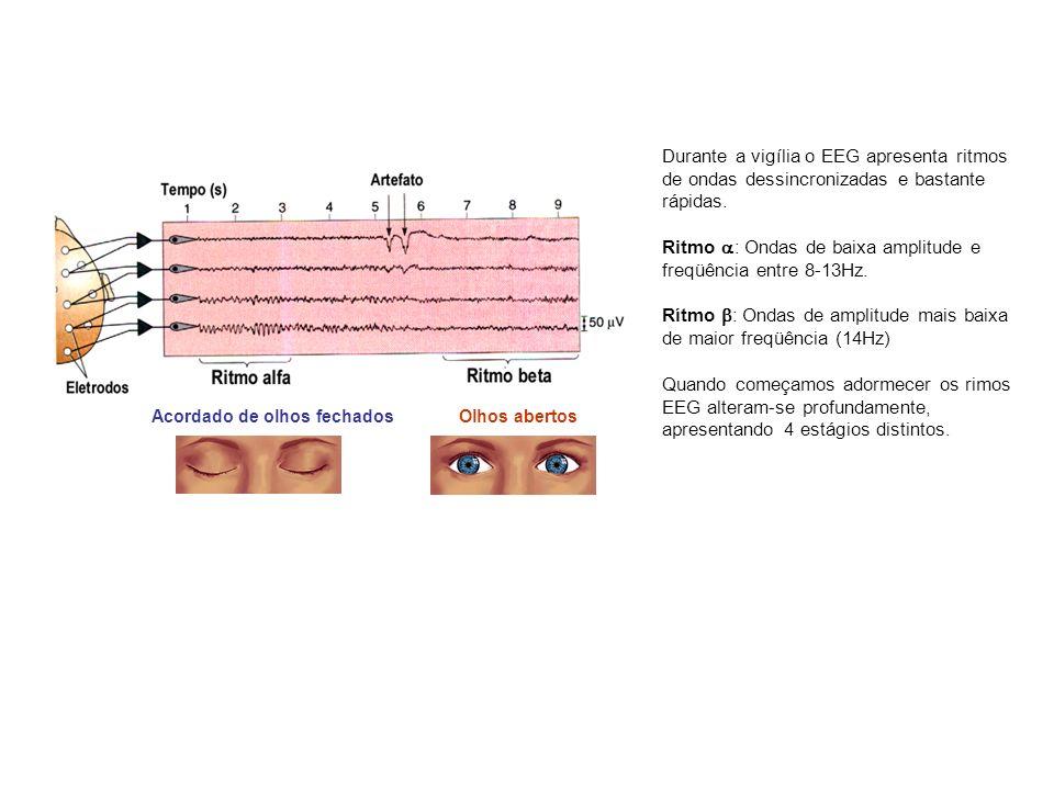 Durante a vigília o EEG apresenta ritmos de ondas dessincronizadas e bastante rápidas. Ritmo : Ondas de baixa amplitude e freqüência entre 8-13Hz. Rít