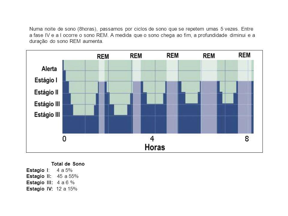 Numa noite de sono (8horas), passamos por ciclos de sono que se repetem umas 5 vezes. Entre a fase IV e a I ocorre o sono REM. A medida que o sono che