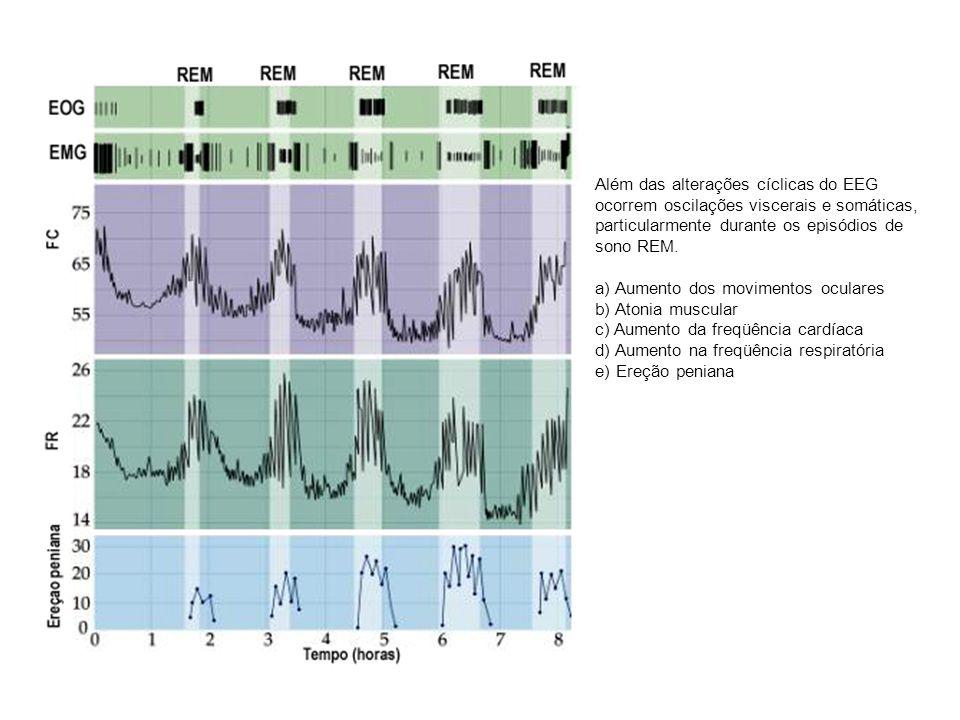Além das alterações cíclicas do EEG ocorrem oscilações viscerais e somáticas, particularmente durante os episódios de sono REM. a) Aumento dos movimen