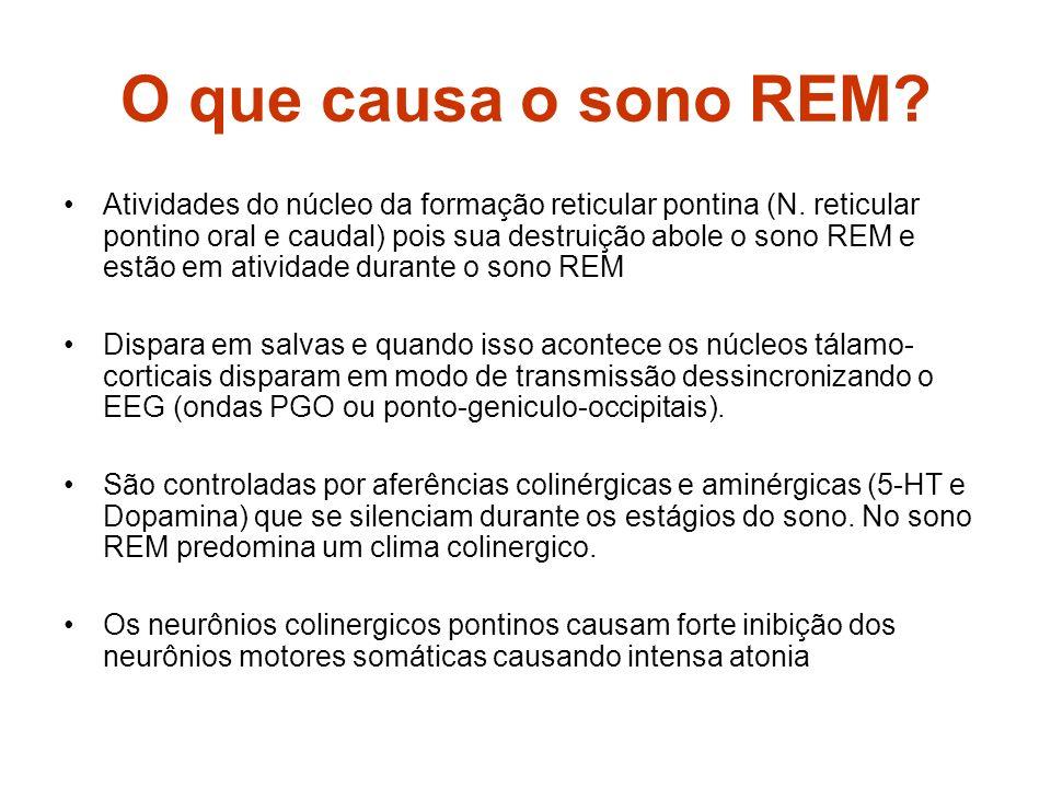O que causa o sono REM? Atividades do núcleo da formação reticular pontina (N. reticular pontino oral e caudal) pois sua destruição abole o sono REM e