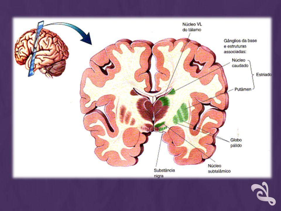 TRATAMENTO Visar a autonomia do paciente Aliviar os sintomas, porém a longo prazo, o uso crônico leva a reações adversas incapacitantes Exercícios físicos, terapia ocupacional, psicoterapia e suporte familiar