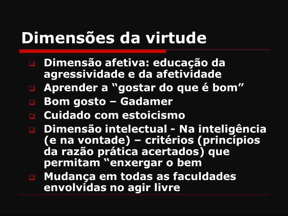 Dimensões da virtude Dimensão afetiva: educação da agressividade e da afetividade Aprender a gostar do que é bom Bom gosto – Gadamer Cuidado com estoi