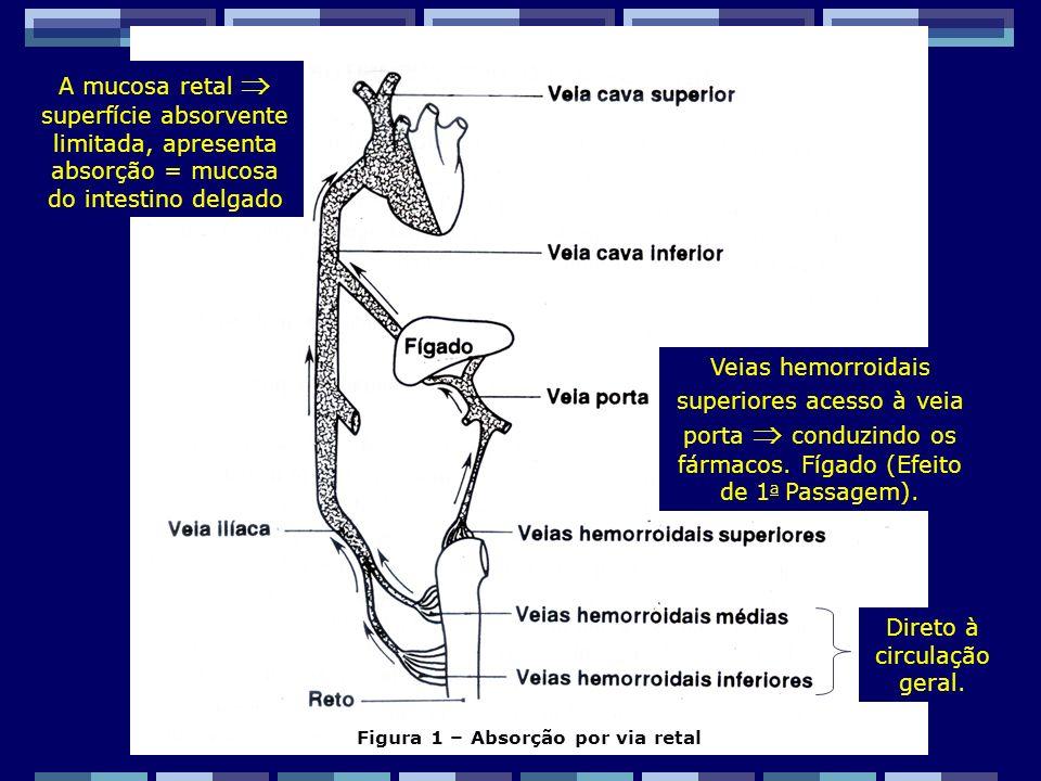 Zaida M F Freitas Farmacêutica – FF/UFRJ Existem numerosas anastomoses entre as veias hemorroidais, e apenas a absorção nas veias muito próximas ao reto ( inferiores e medias) evitaria a passagem pelo fígado.