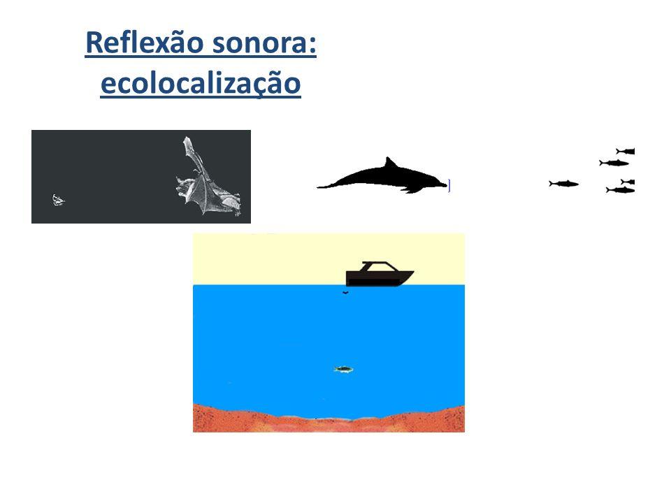 Eco / Reverberação Lembre-se: a distância mínima para haver eco é de 17 m se a velocidade do som for igual a 340 m/s.