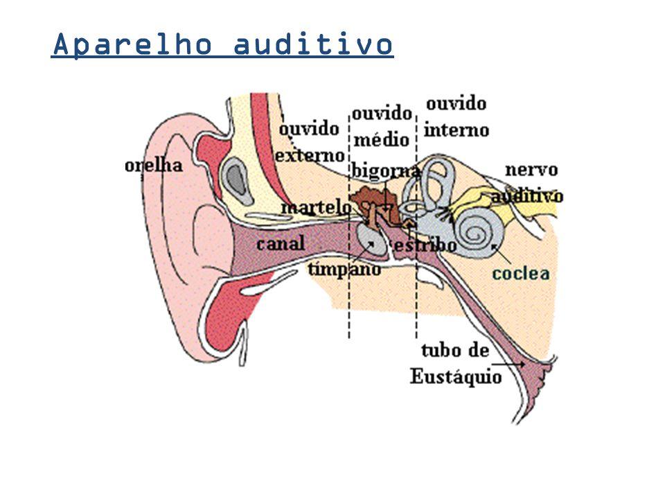 O som O som é uma onda mecânica, longitudinal... a onda vai pra lá E oscila na mesma direção... que é perceptível pelo ouvido humano normal.