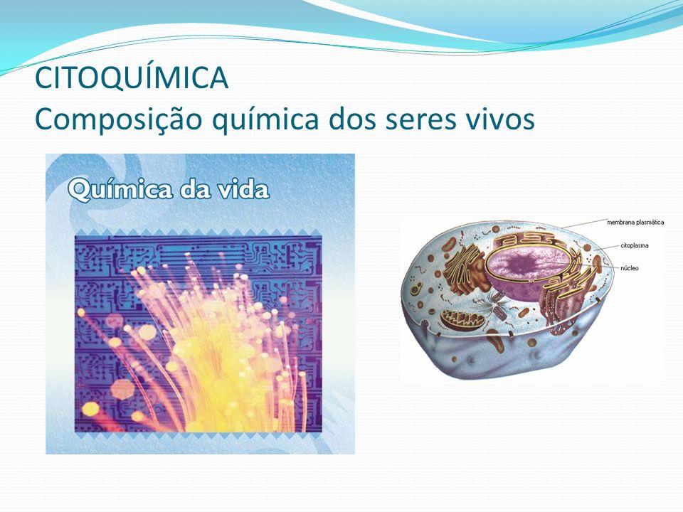 POLISSACARÍDEOS – São grandes moléculas de glicídios, formadas pela reunião de vários monossacarídeos.