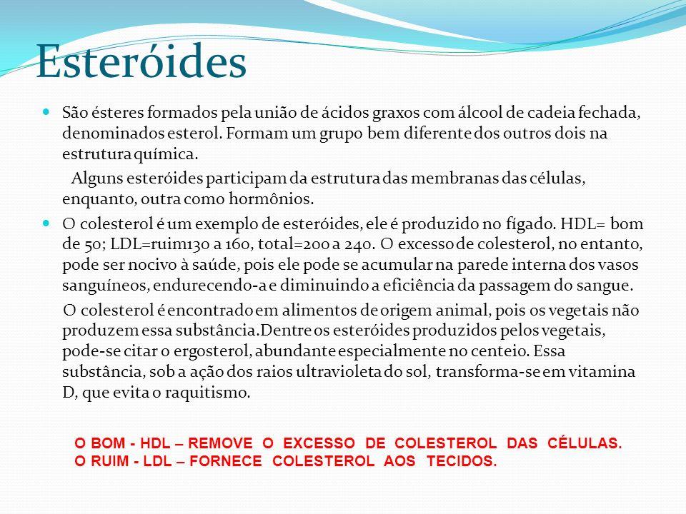 Esteróides São ésteres formados pela união de ácidos graxos com álcool de cadeia fechada, denominados esterol. Formam um grupo bem diferente dos outro