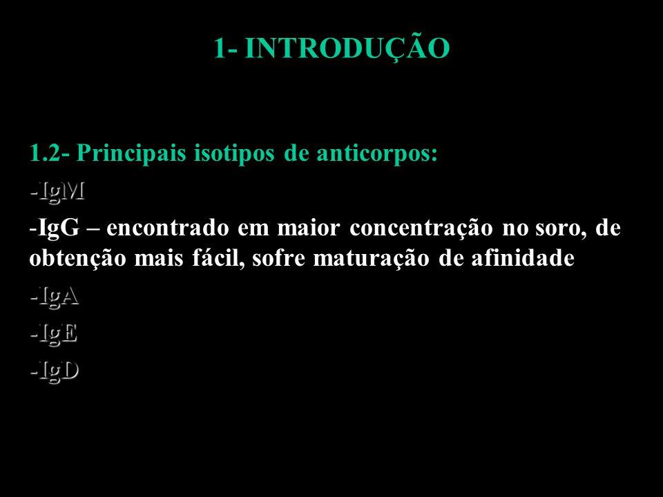 1- INTRODUÇÃO 1.2- Principais isotipos de anticorpos: -IgM -IgG – encontrado em maior concentração no soro, de obtenção mais fácil, sofre maturação de