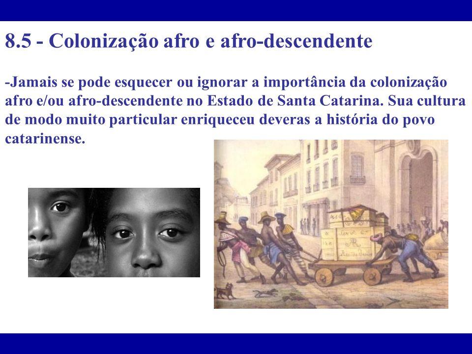 8.5 - Colonização afro e afro-descendente -Jamais se pode esquecer ou ignorar a importância da colonização afro e/ou afro-descendente no Estado de San