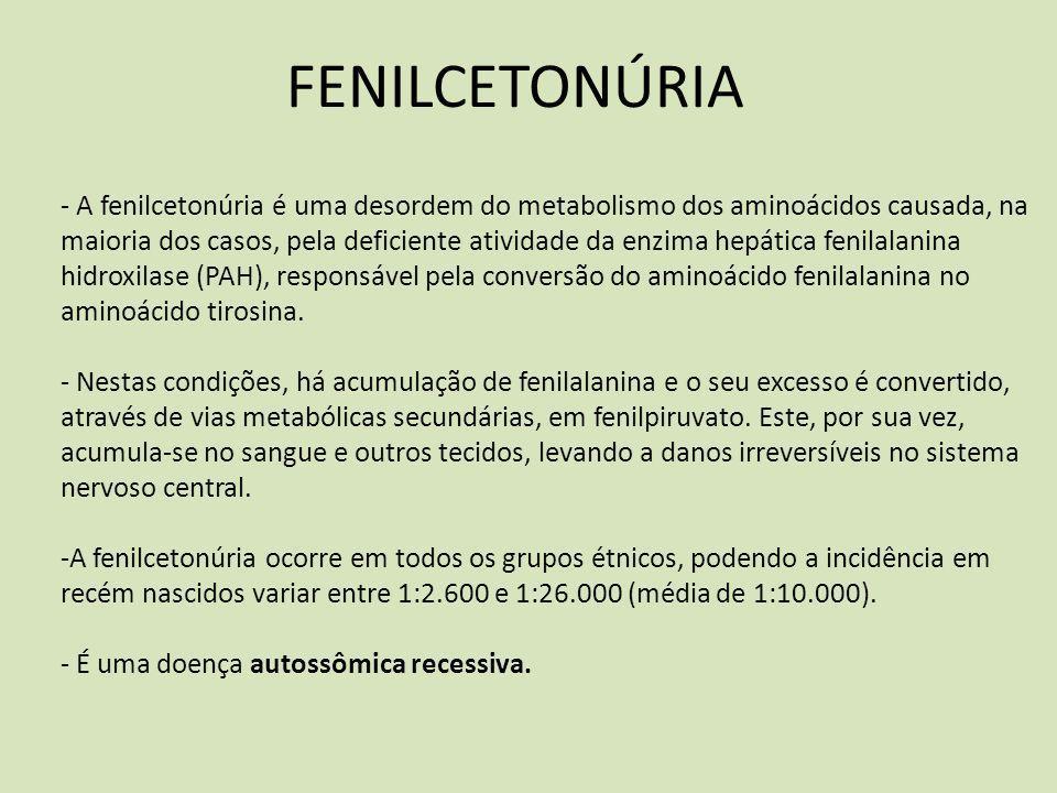 FENILCETONÚRIA - A fenilcetonúria é uma desordem do metabolismo dos aminoácidos causada, na maioria dos casos, pela deficiente atividade da enzima hep