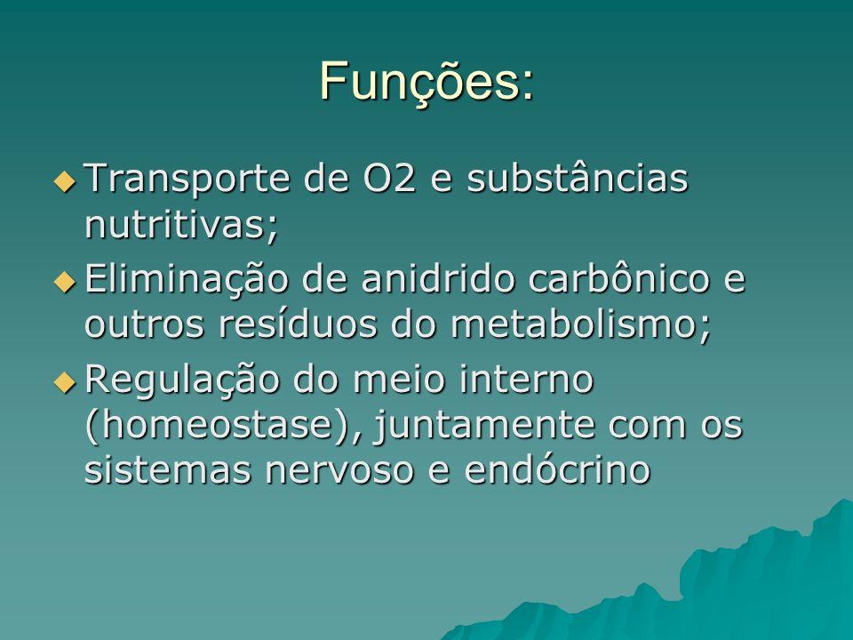 Funções: Transporte de O2 e substâncias nutritivas; Transporte de O2 e substâncias nutritivas; Eliminação de anidrido carbônico e outros resíduos do m