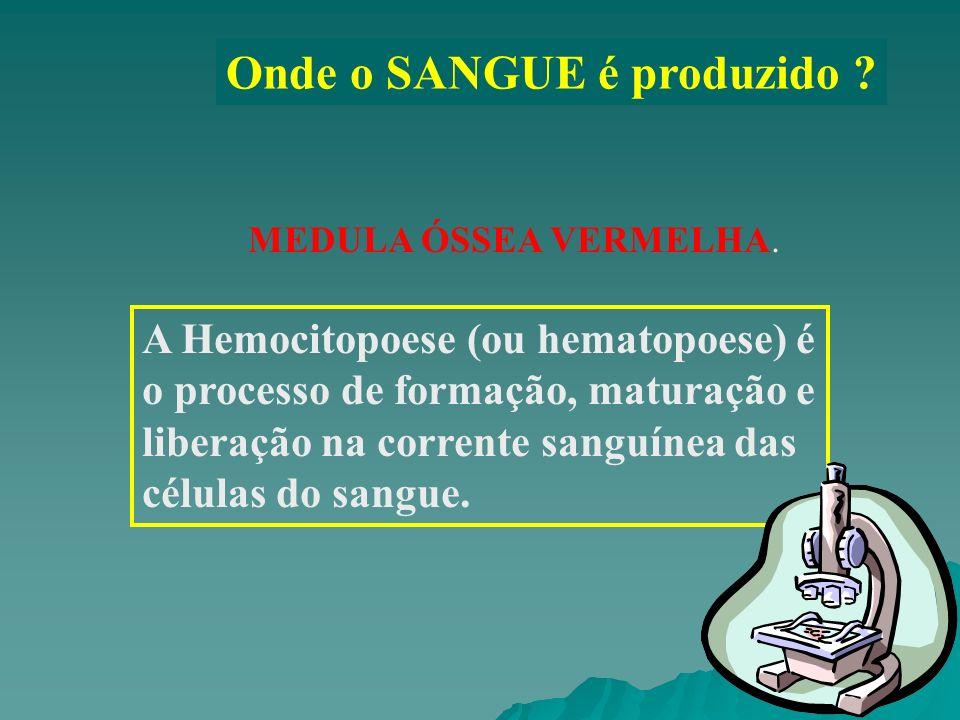 Onde o SANGUE é produzido ? MEDULA ÓSSEA VERMELHA. A Hemocitopoese (ou hematopoese) é o processo de formação, maturação e liberação na corrente sanguí