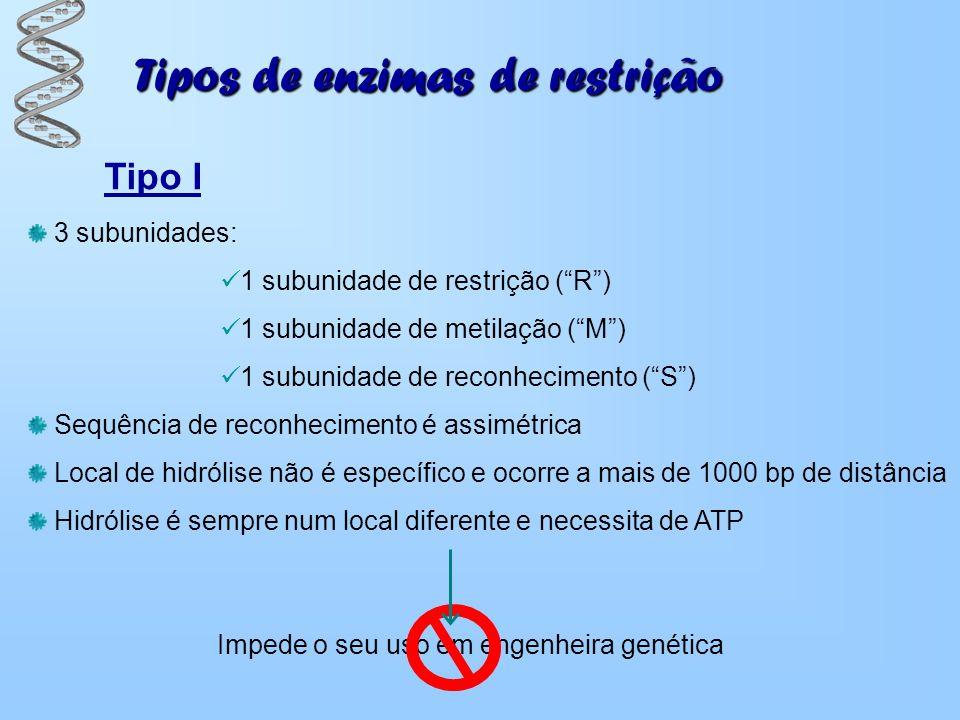 Tipos de enzimas de restrição Tipo I 3 subunidades: 1 subunidade de restrição (R) 1 subunidade de metilação (M) 1 subunidade de reconhecimento (S) Seq