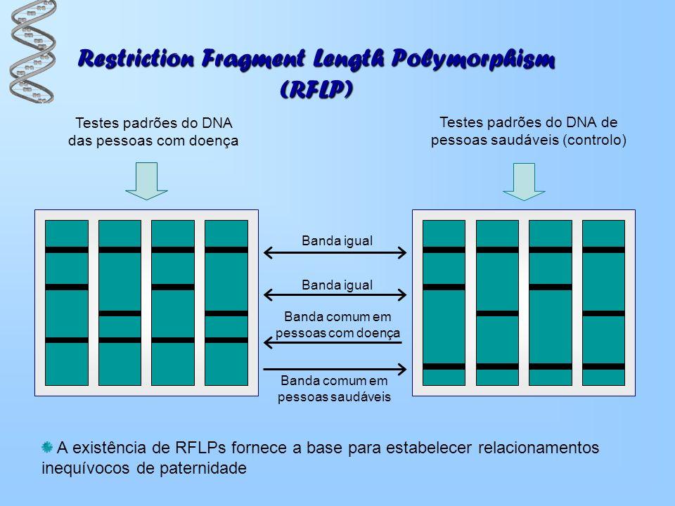 Restriction Fragment Length Polymorphism (RFLP) Banda igual Banda comum em pessoas com doença Banda comum em pessoas saudáveis Testes padrões do DNA d