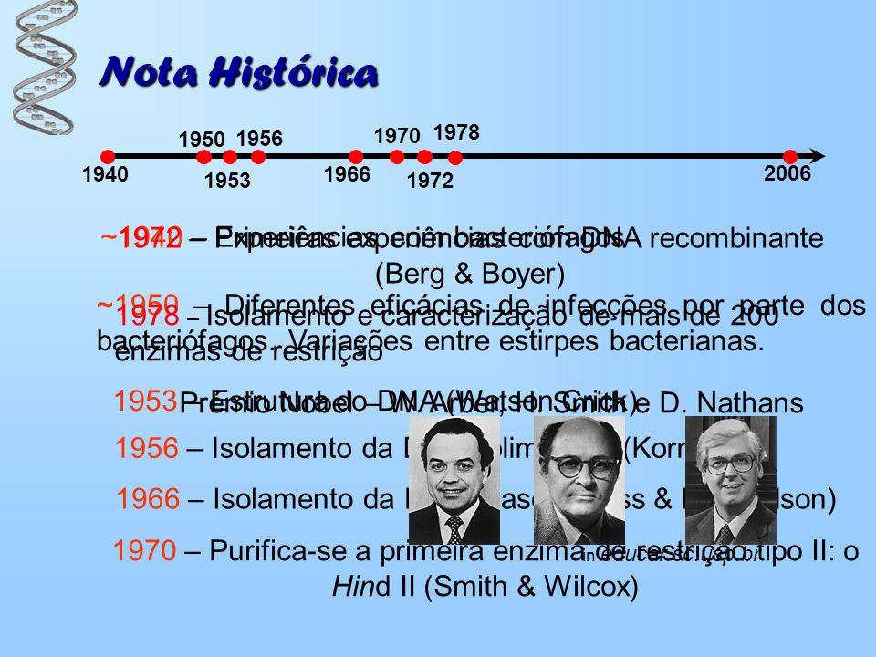 Nota Histórica 1940 1950 ~1940 – Experiências com bacteriófagos ~1950 – Diferentes eficácias de infecções por parte dos bacteriófagos. Variações entre