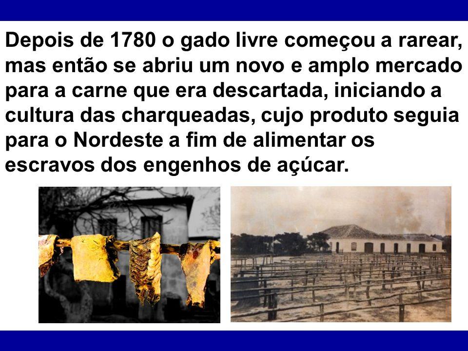 Depois de 1780 o gado livre começou a rarear, mas então se abriu um novo e amplo mercado para a carne que era descartada, iniciando a cultura das char