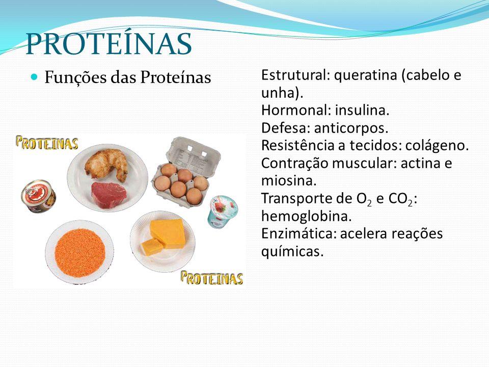 PROTEÍNAS Funções das Proteínas Estrutural: queratina (cabelo e unha).
