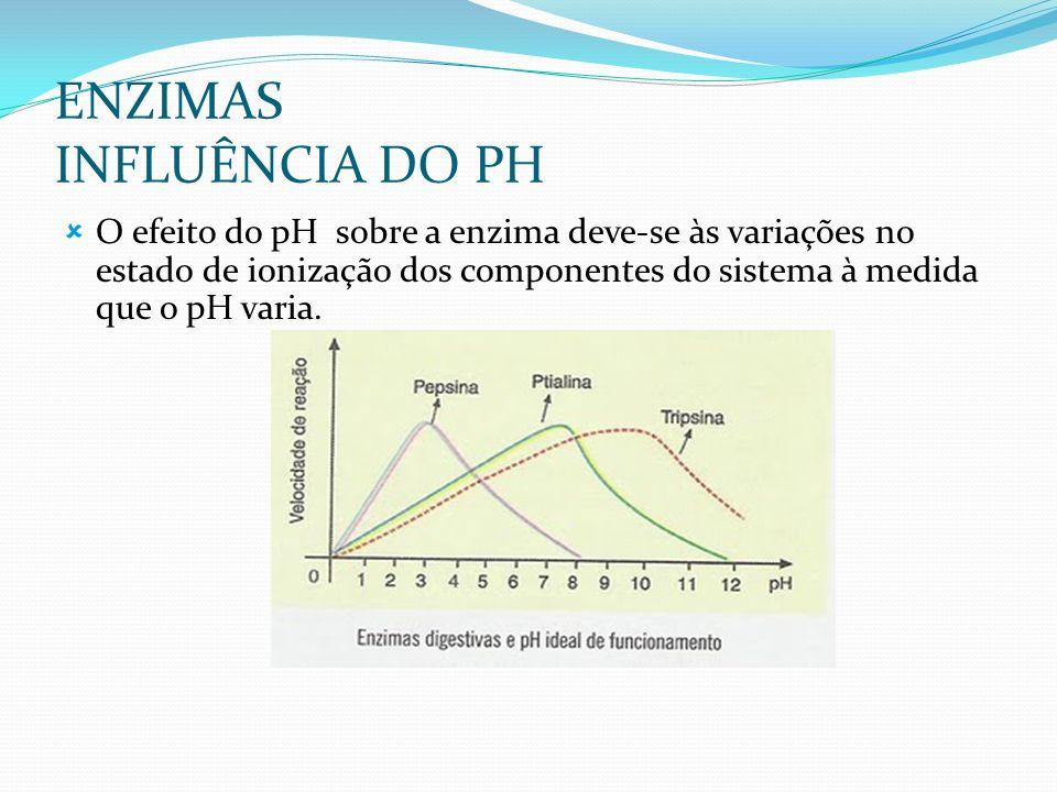 ENZIMAS INFLUÊNCIA DO PH O efeito do pH sobre a enzima deve-se às variações no estado de ionização dos componentes do sistema à medida que o pH varia.
