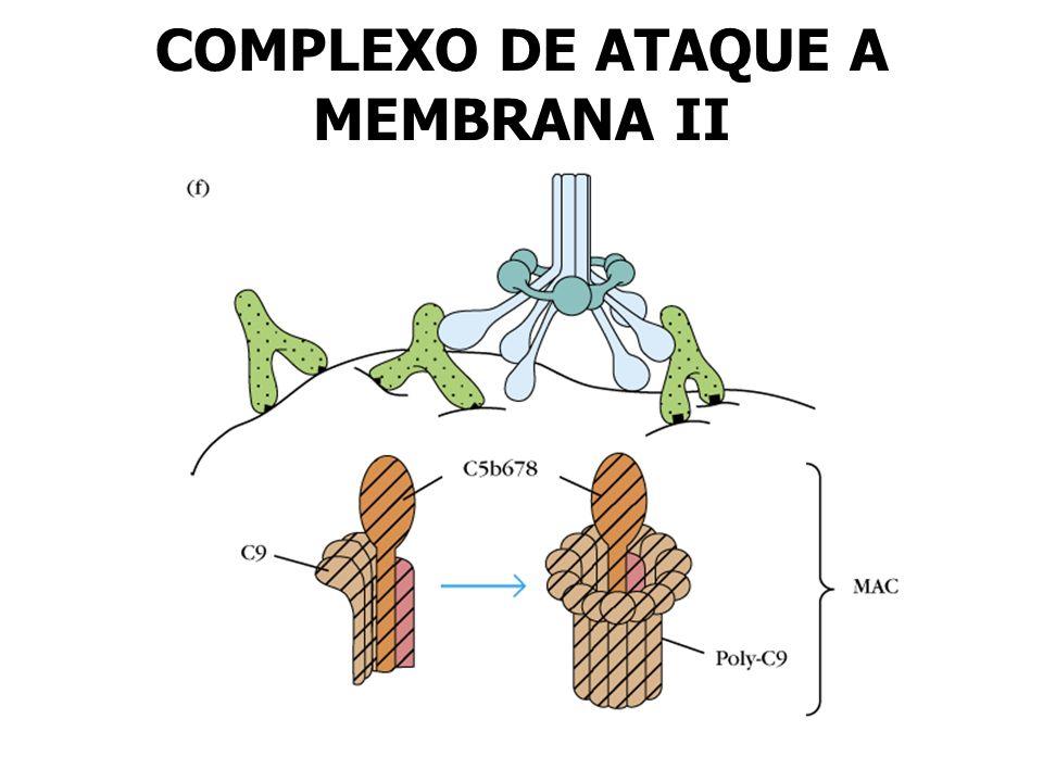 COMPLEXO DE ATAQUE A MEMBRANA II